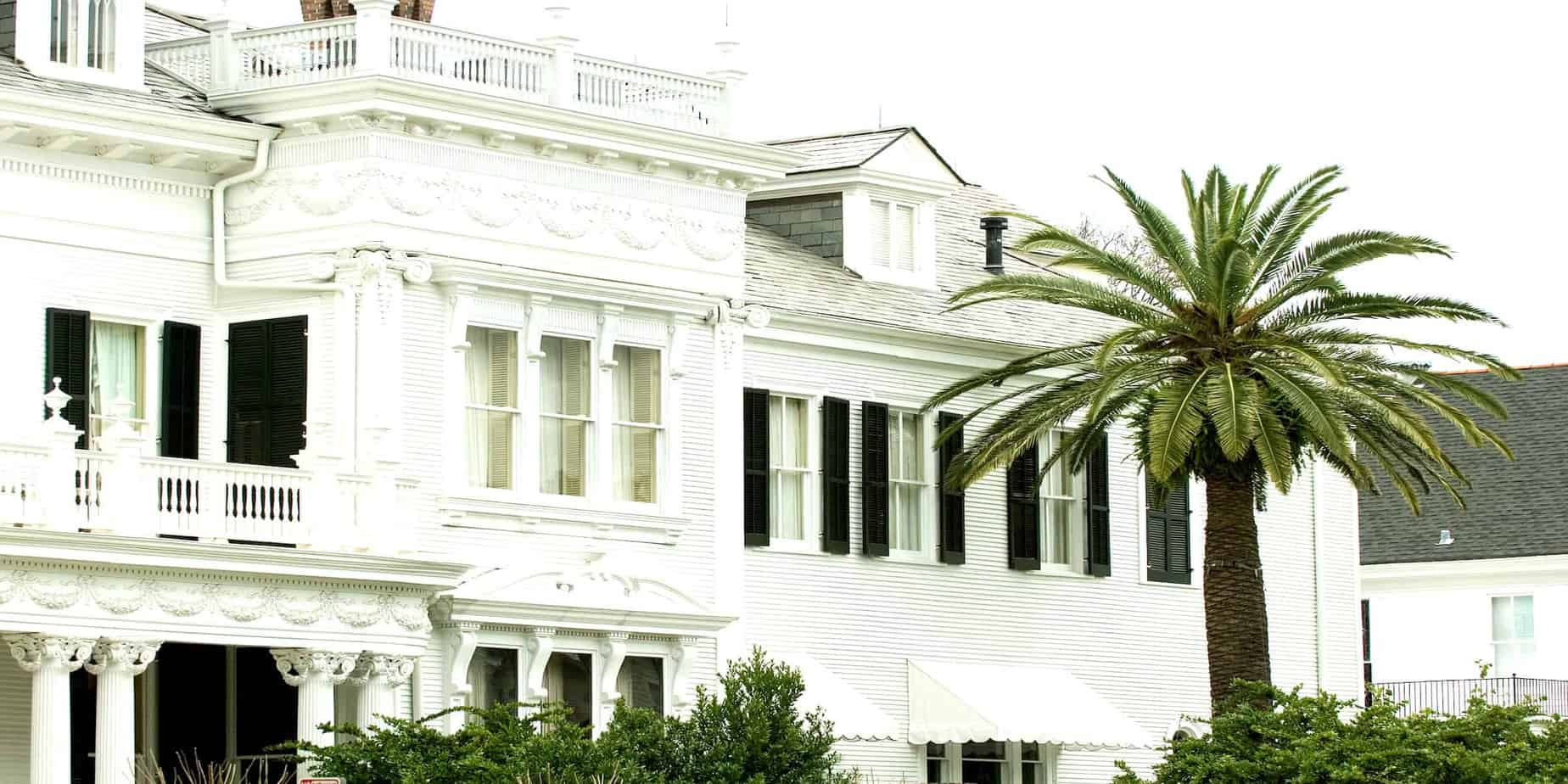 White mansion with palm tree on foreground in New Orleans' Garden district